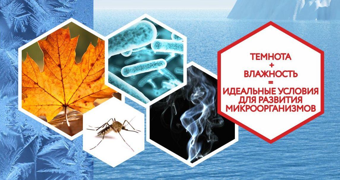 Идеальные условия для микроорганизмов